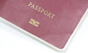 Electronic Microchip Passport