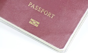 Electronic Microchip Passport