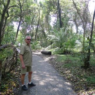 """Her er Atle i regnskogen på den andre bredden. Her er det meget frodig, da det """"regner"""" hele tiden…"""