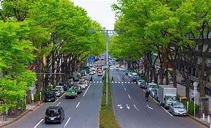 Omotesando - Bing images